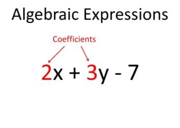 Algebraic Expression: Examples & Expressions