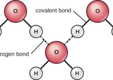Understanding More About Polar Covalent Bond